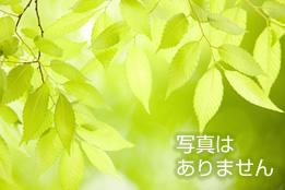 仙台市都市公園条例の一部を改正する条例の採決に係る対応について