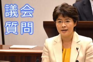代表質疑 すげの直子議員(12月11日)
