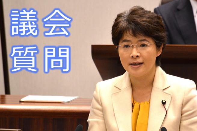 代表質疑 ふなやま由美議員 (6月17日)
