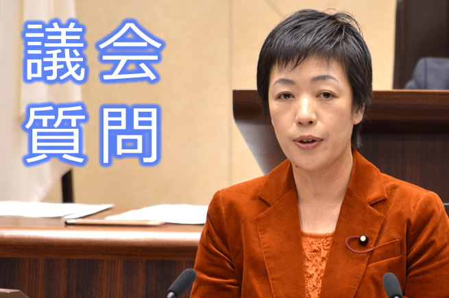 代表質疑 すげの直子議員 (6月13日)