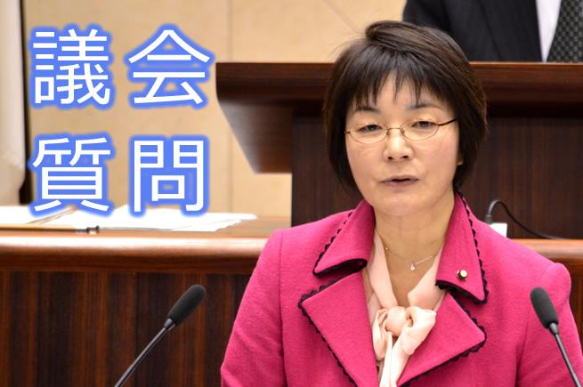 代表質疑 高見のり子議員 (12月13日)