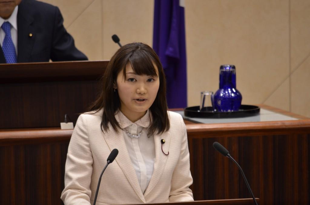 第1回定例会 日本共産党の一般質問