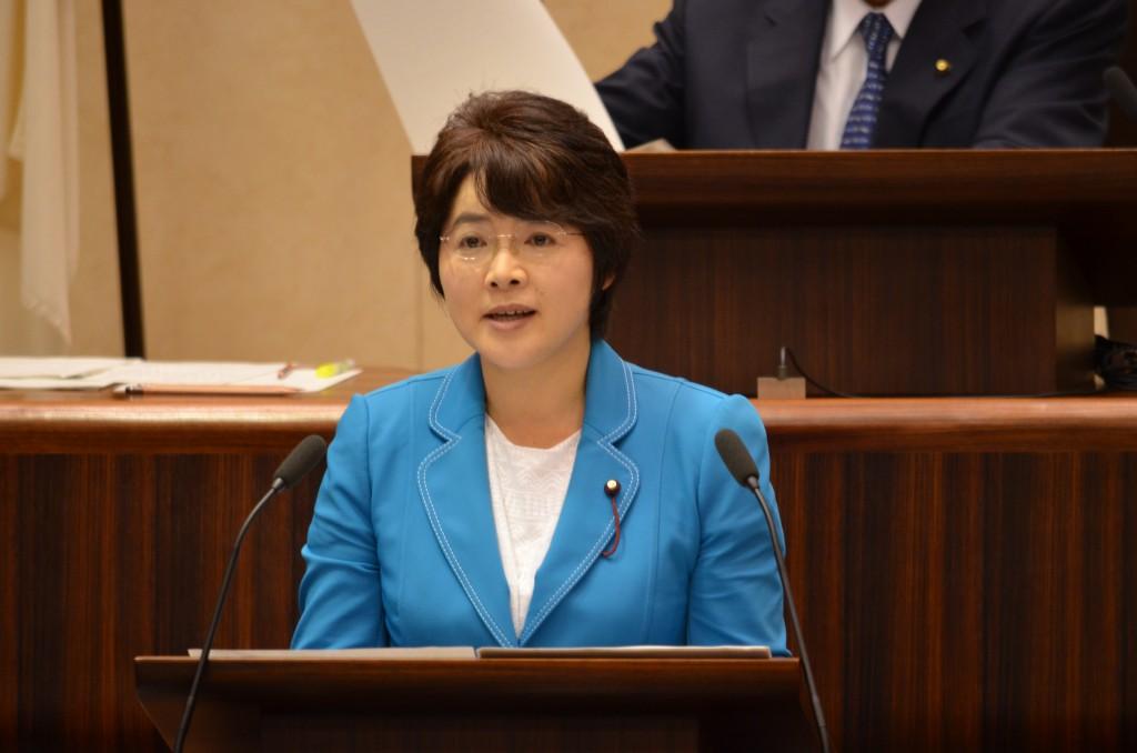 第2回定例会 日本共産党の代表質疑