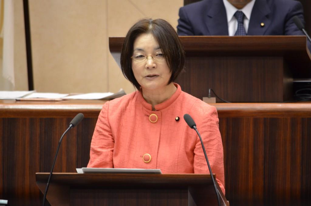 第2回定例会 日本共産党の一般質問