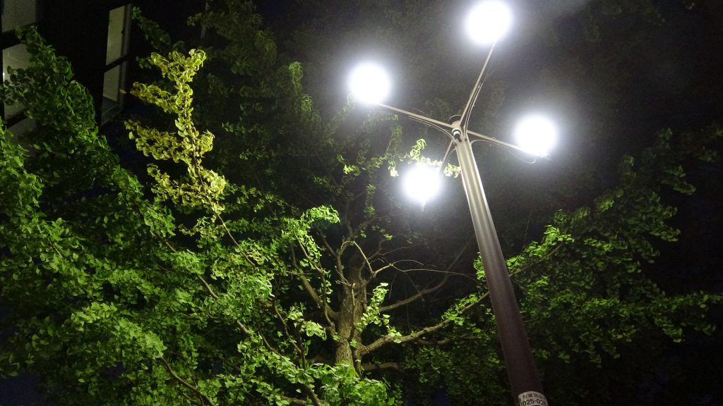 【動画】街路灯の電気料金問題 共産党の論戦ダイジェスト